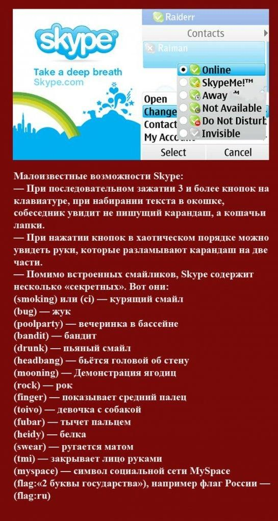 Факты о Skype (15 картинок)