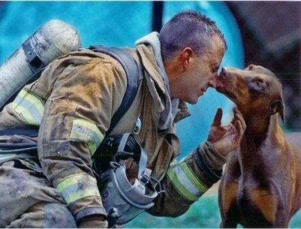 Спасенные животные (27 фото)