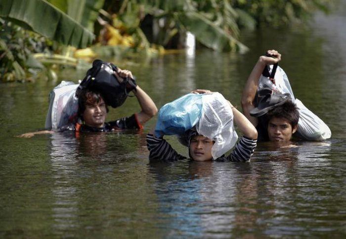 Опасности, скрытые под водой (24 фото)