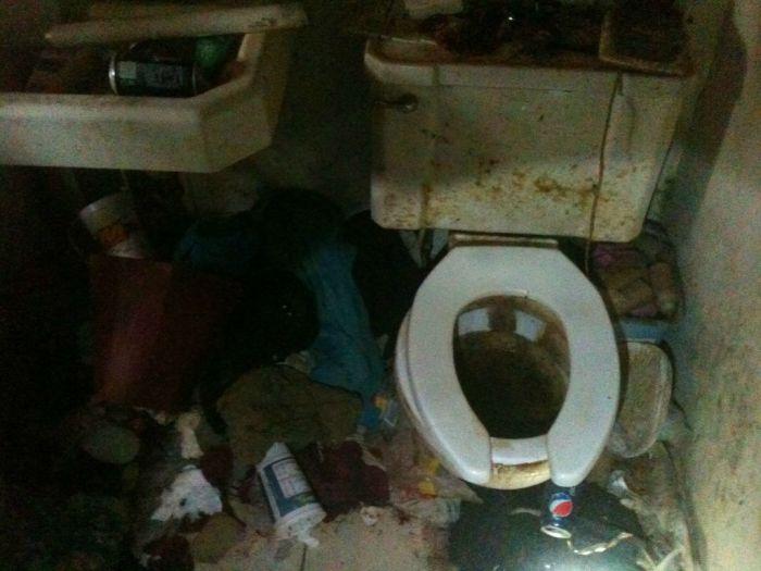 Заваленный мусором дом (10 фото)
