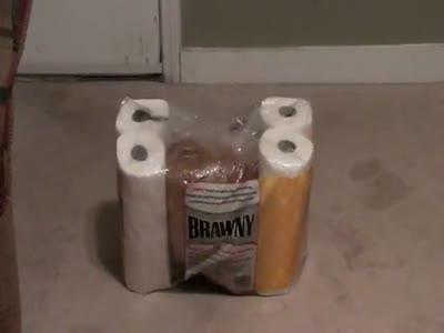 Убежище в упаковке туалетной бумаги