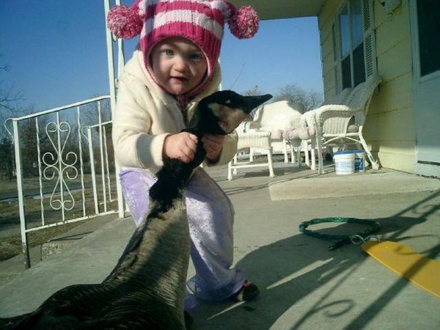 Детские шалости (50 фото)