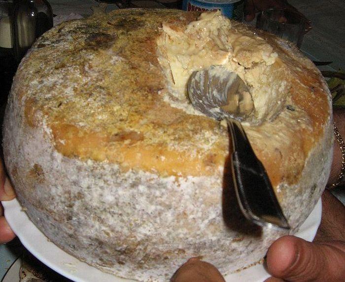 Итальянский сыр Касу Марцу (10 фото)