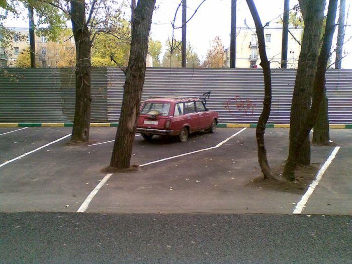 Стеклянный болт 2011 (38 фото)