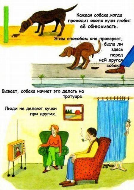 Странная книга (9 картинок)