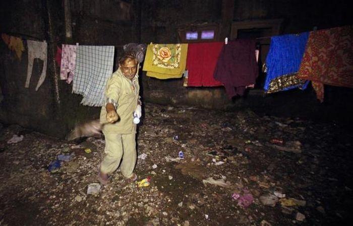 Крысоловы в Мумбае (15 фото)