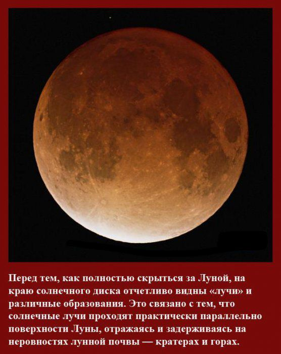 Факты о солнечном затмении (14 фото)