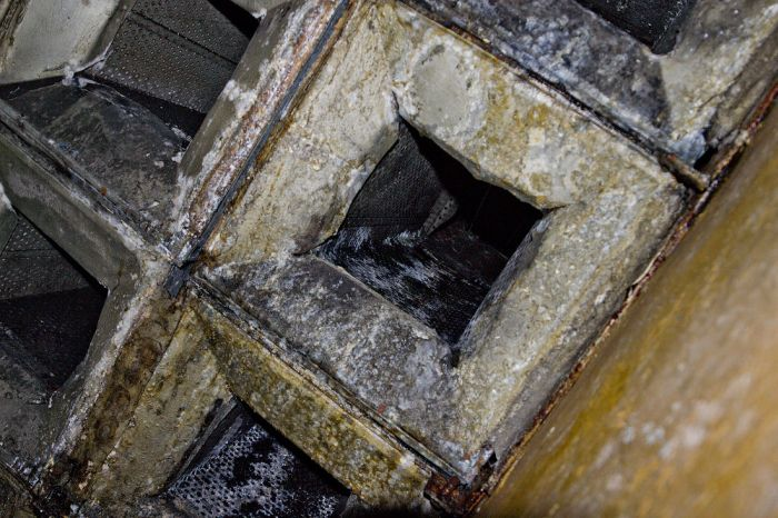Бункер в Беловежской пуще (78 фото)