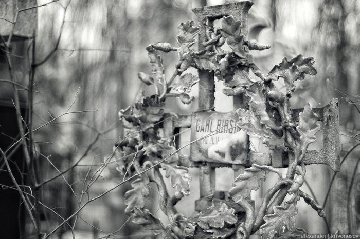 Старинное Введенское кладбище (28 фото)