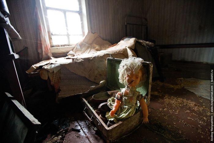 Заброшенные дома по дороге к Белому озеру (33 фото)