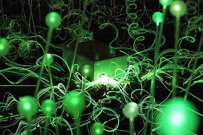 Сад света (10 фото)