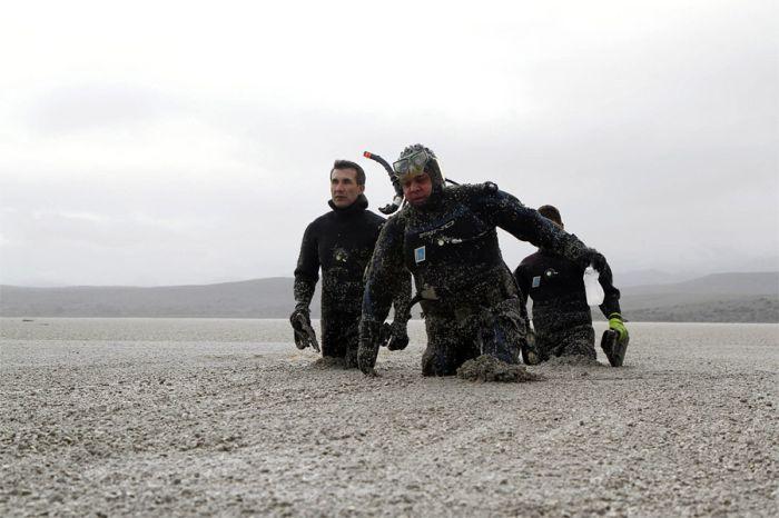 Самые лучшие снимки Reuters в 2011 году (65 фото)