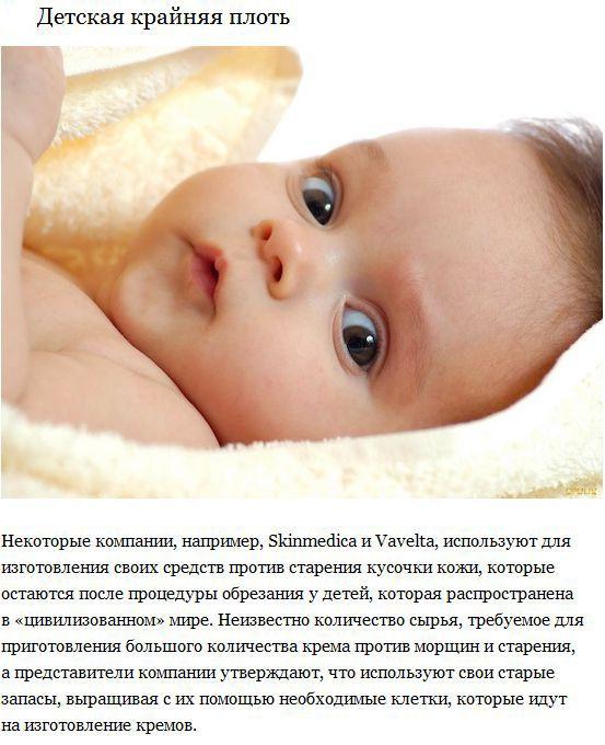Ингредиенты современной косметики (10 фото)