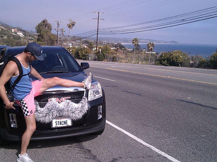 Автомобили с усами (28 фото)