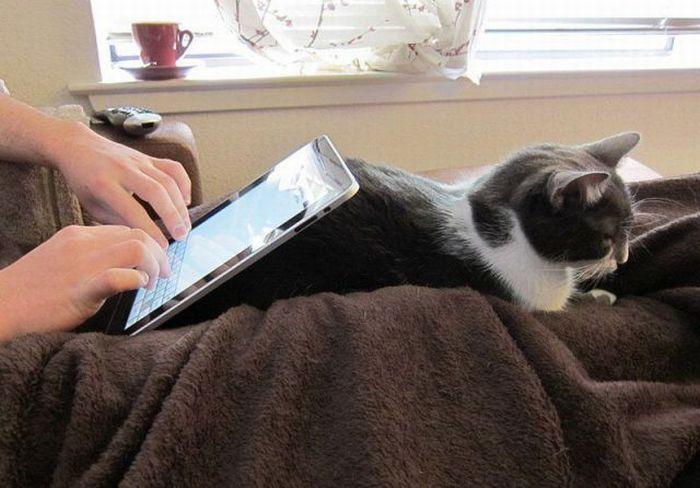 Уникальная технология планшета iPad mini