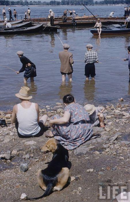 Путешествие по Волге 1958 год (26 фото)