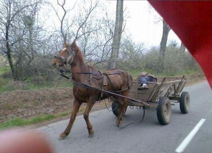 Польский автопилот (2 фото)