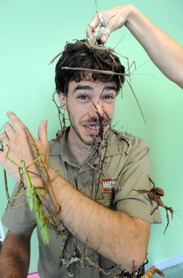 Парень, который не боится насекомых (4 фото)