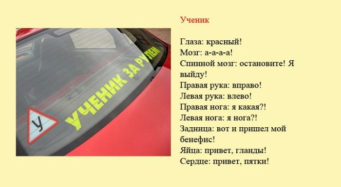 Классификация водителей (8 картинок)