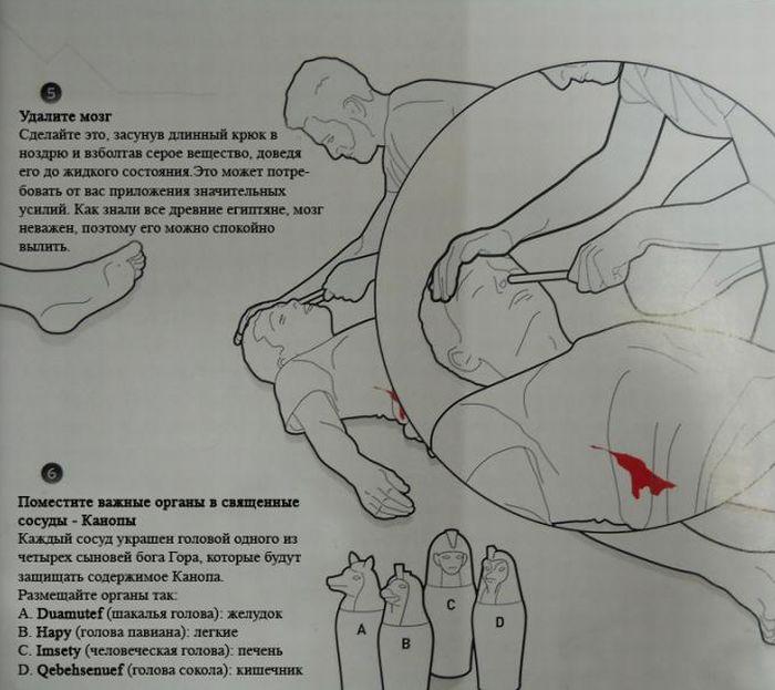Как сделать из друга мумию? (5 фото)