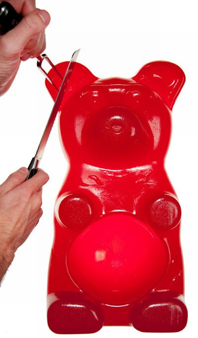 Большой, сладкий мишка (7 фото)