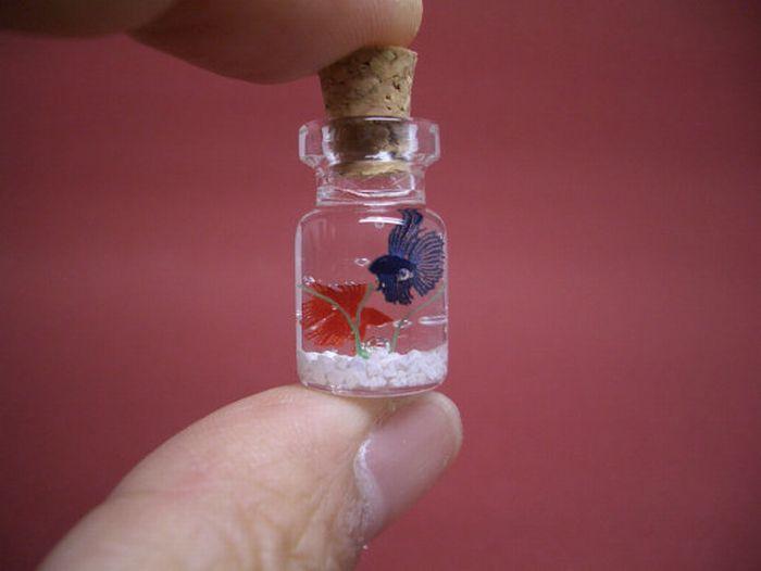 Крошечный мир в бутылочках (27 фото)