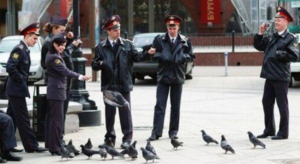 Открытка, смешные картинки про службу в полиции