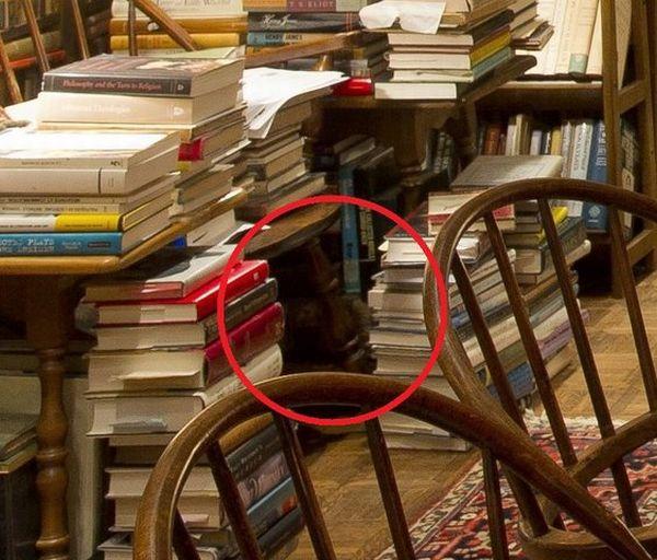 Найдите кота (6 фото)