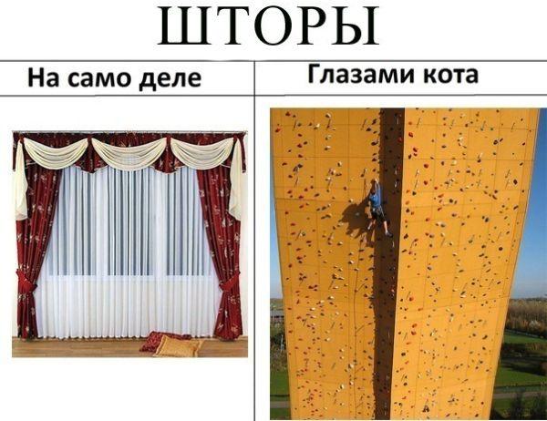 ���������))