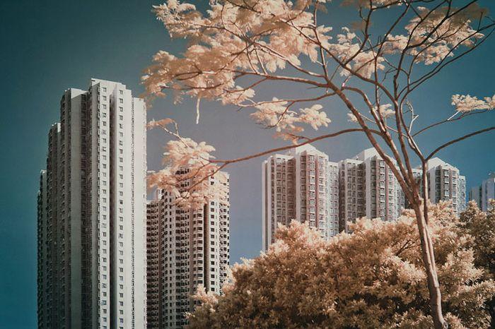 Гонконг в инфракрасном диапазоне (49 фото)