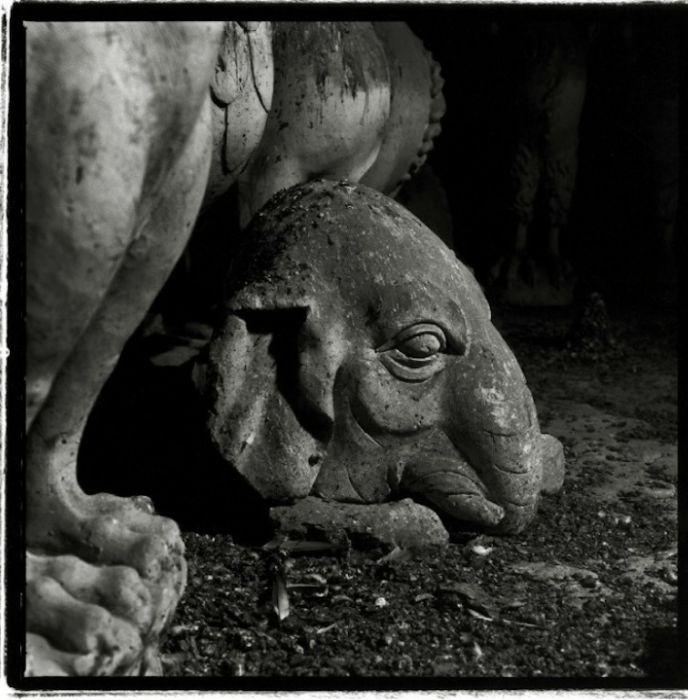 Нотр-Дам де Реймс (91 фото)