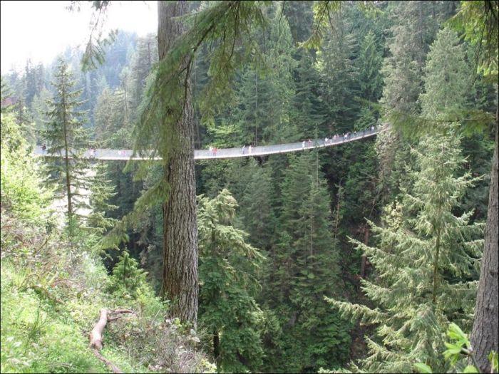 Мост через реку Капилано (6 фото)
