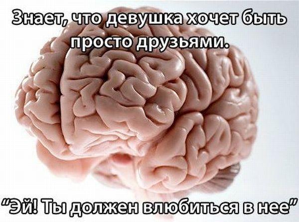 Игры разума (16 картинок)