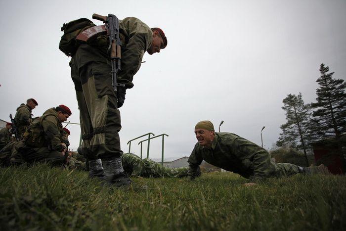 Борьба за выживание (17 фото)