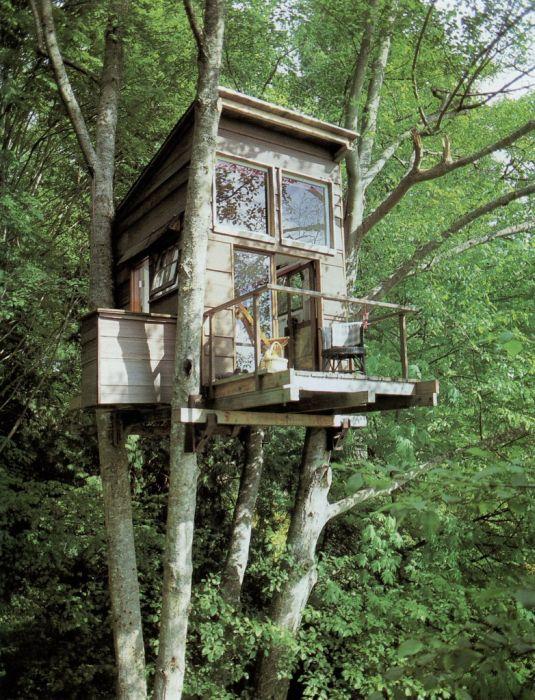 Дома на природе (47 фото)