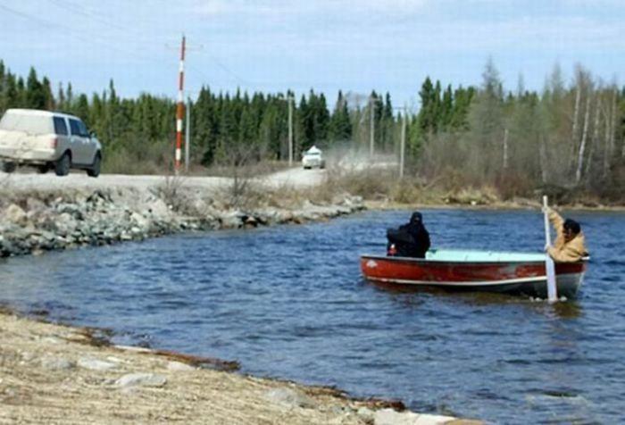 Странное животное найдено в Канаде (6 фото)