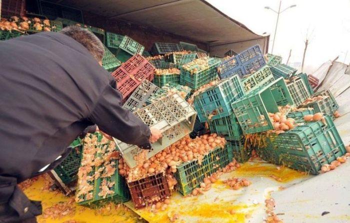 Грузовик с яйцами (5 фото)
