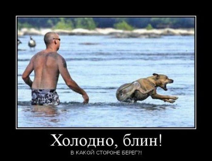 http://trinixy.ru/pics5/20120131/demotivatory_08.jpg
