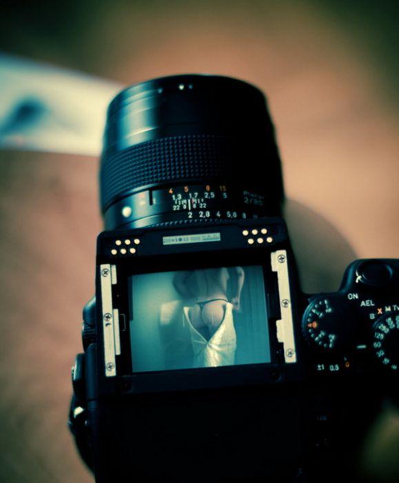 Прикольные картинки (94 фото)