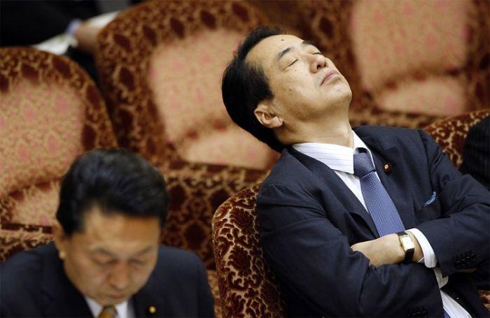 Спящие политики (15 фото)