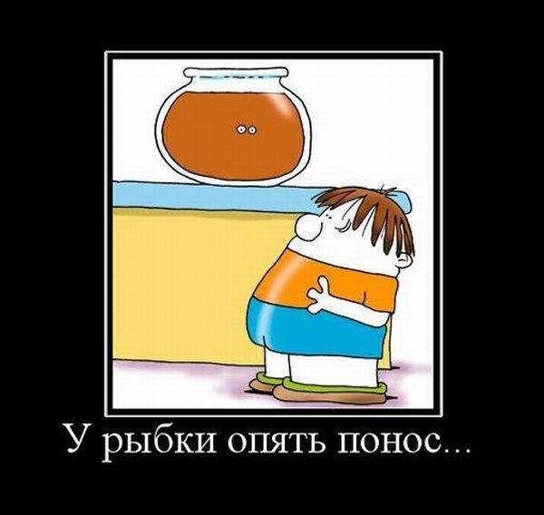 http://de.trinixy.ru/pics5/20120207/demotivatory_25.jpg