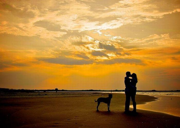 Романтические фотографии (40 фото)
