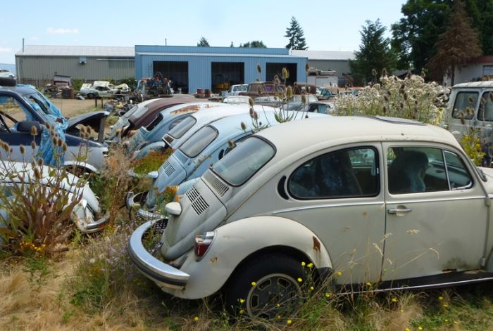 Последнее пристанище для автомобилей (99 фото)