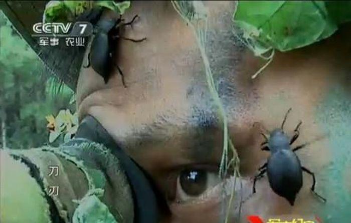 Подготовка китайских снайперов (8 фото)