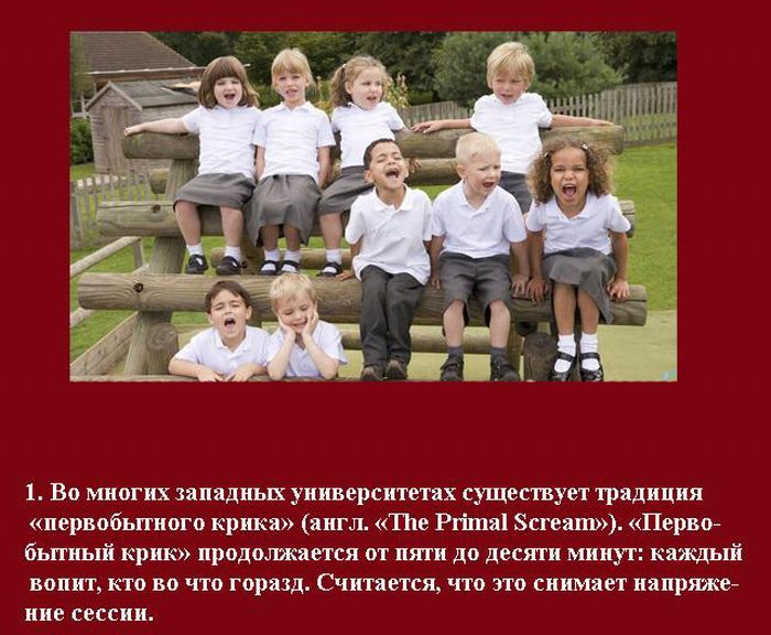 Студенческие традиции (10 фото)