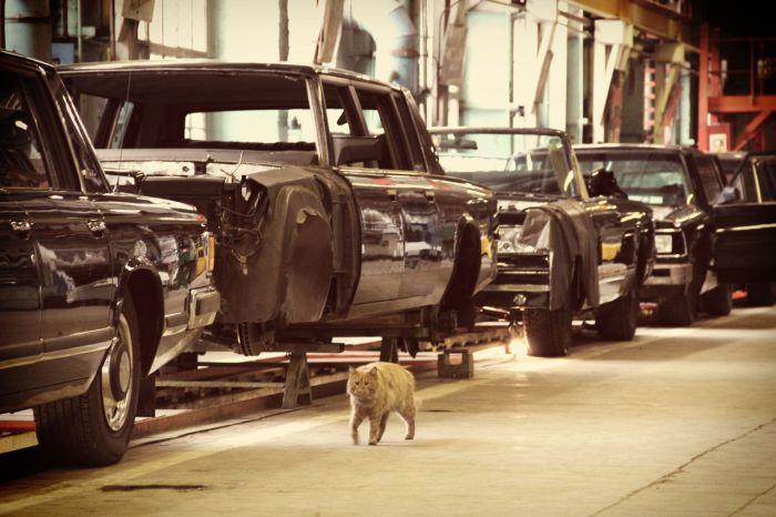 Как собирают автомобили ЗиЛ (34 фото)