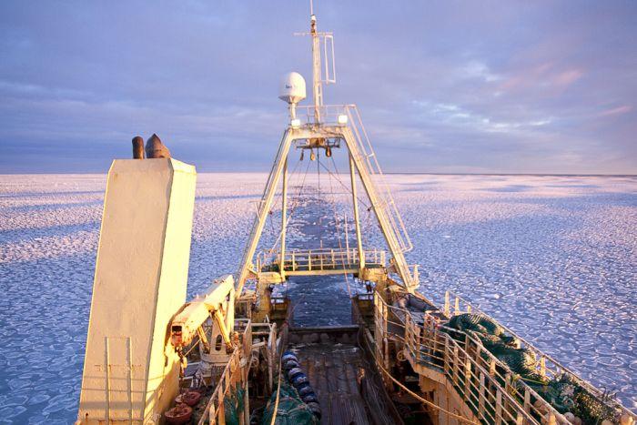 Замерзшие воды Исландии (9 фото)