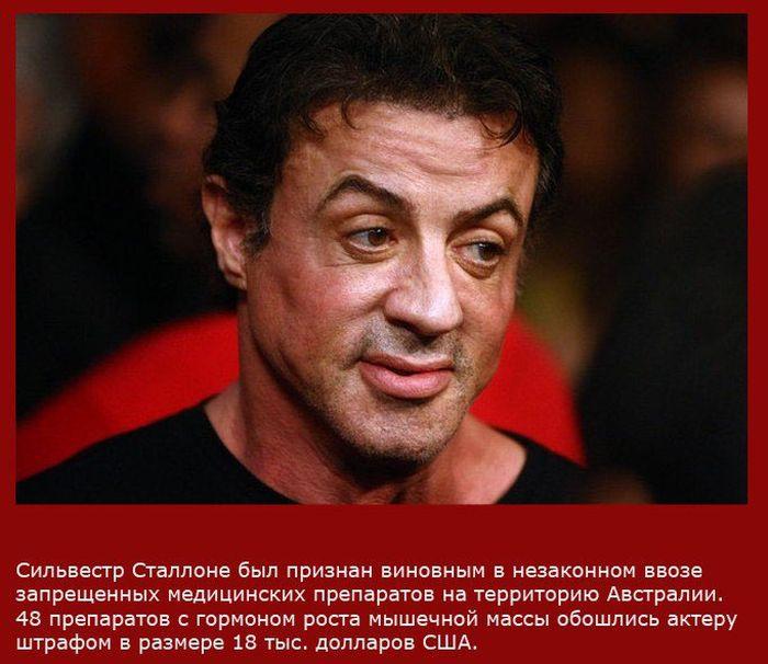 Факты о Сильвестре Сталлоне (10 фото)
