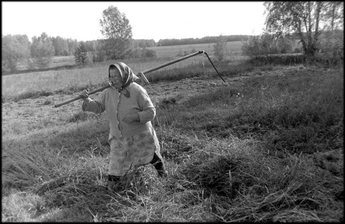 Деревенская жизнь (31 фото)