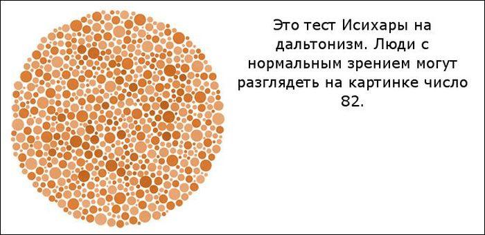 Оптические иллюзии с загадкой (11 фото)